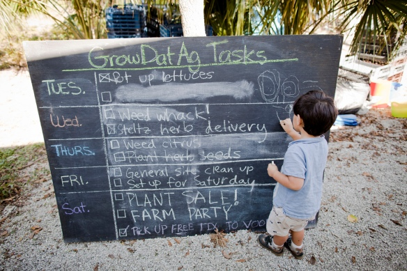 Our giant chalkboard announces the agricultural tasks on our plate. Photo by William Widmer